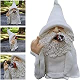 Smoking Wizard Gnome, Naughty Garden Gnome for Lawn Ornaments Indoor or Outdoor Decorations Garden Dwarf Gnome Statue (Cigar-Boss)