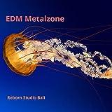 Edm Metalzone