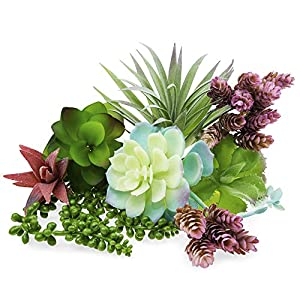 Artificial Succulents Big Unpotted Plants – Fake Faux Realistic Flowers – Fake Plants for Succulent Planter wit Faux Succulents, String of Pearls, Cactus and Aloe Plant – Assorted Succulent Plants