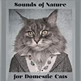 Sounds of Nature for Domestic Cats - 15 New Age Melodies Especially for Animals Which Don't Leave the House, Relaxation for a Pet, Closer to Nature, Instinct, Feel Secure, Best Friend, Birds, River, Rain