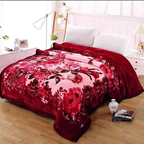 DZDZXQG fleece blanket with sleeves,Extra thick double thick blanket winter warm plus velvet winter sheet quilt-200 * 230cm(4.5kg)_Y