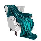 Exclusivo Mezcla Luxury Flannel Velvet Plush Throw Blanket – 50' x 60' (Teal)
