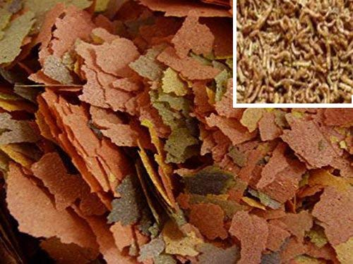 PROREZULT Tropical Fish Food Flakes 25g with ADDED Freeze Dried Bloodworm Premium Floating Flake Feed Mix for All Auarium Fish Cichlid Pleco Discus Tetra Aquarium Feed