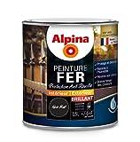 ALPINA Peinture Fer antirouille - Brillant Noir Mat 0,5L 6m²