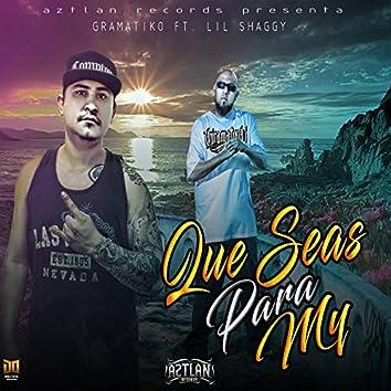 Que Seas Para Mi (feat. Lil Shaggy)