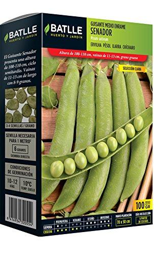 Batlle - Graines de légumes - Senateur Moyen (100 g)