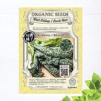 【有機種子】 黒キャベツ/カーボロネロ Sサイズ 200粒 種蒔時期 2~3月、6~8月、冷地:4~6月