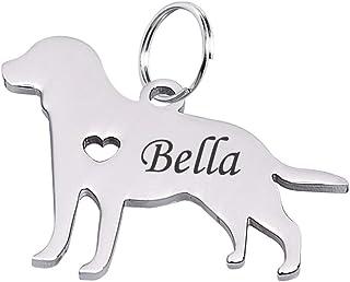 Etiqueta de identificación de perro Tornado personalizada, con silueta de perro salchicha y placa conmemorativa de acero i...