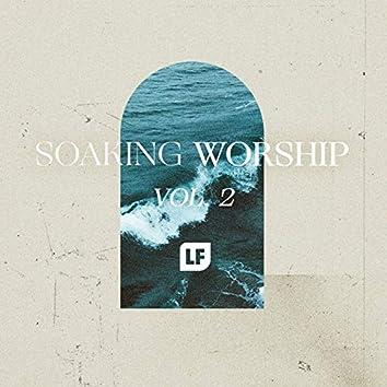 Soaking Worship, Vol. 2