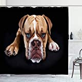 Ahawoso Shower Curtain for Bathroom 72x72 Head Doggy Young Sad English Bulldog Front Pedigree Old Black Animals Wildlife Looking Olde Brown Waterproof Polyester Fabric Bath Decor Set with Hooks