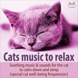 Sleep Music Cat with Dishwasher Sound and Gentle Purring, No Deep Sounds
