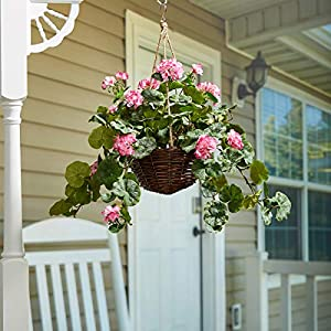 Pure Garden Faux Flowers–Hot Pink Geranium-Hanging Natural and Lifelike Floral Arrangement with Basket for Home or Office