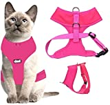 Dexil Harnais de luxe rembourré et résistant pour chat
