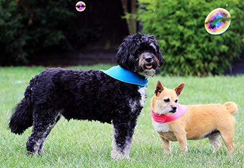Kühlender Hundebandana-Geschenk für Ihren Hot Dog-Reversible Neopren -Einstellbar-Gemacht von einem Hundeliebhaber in UK-Einstellbarer Näher-Mittlerer Hund Teal/Silber