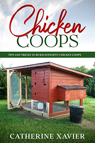 Chicken Coops: Tips and Tricks to Build Efficient Chicken Coops