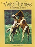 The Wild Ponies of Assateague Island (Books for Young Explorers) Hardcover – February 28, 1985 by Donna K. Grosvenor (Author), James L. Stanfield (Photographer)