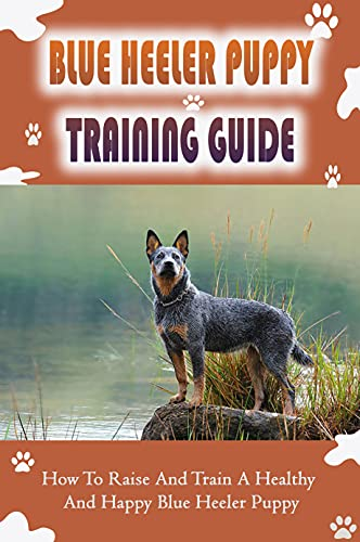 Blue Heeler Puppy Training Guide: How To Raise And Train A Healthy And Happy Blue Heeler Puppy: How To Potty Train A Blue Heeler Puppy (English Edition)