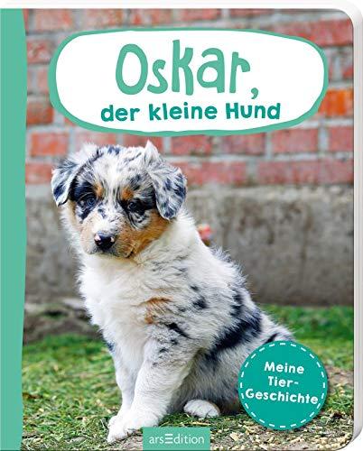 Erste Fotogeschichte: Oskar, der kleine Hund: Meine Tiergeschichte