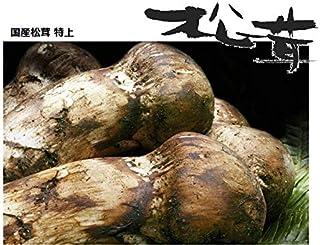 奥会津旬彩館 国産 松茸 特上 蕾から中開き 500g 会津産 岩手産
