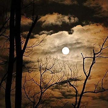 Night Moon Macabre