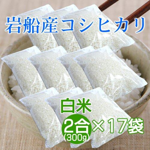 新潟岩船産コシヒカリ 2合(300g)×17袋セット(約5kg)/お米1回炊き分 一人暮らし 単身赴任 少人数のご家庭に