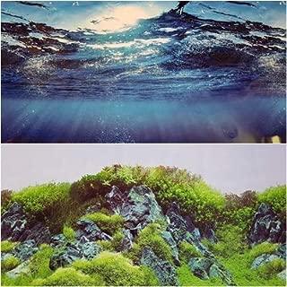 Karen Low New!! 23 Inch Height Double Sided Aquarium Background Blue Ocean Undersea Wallpaper Decorations