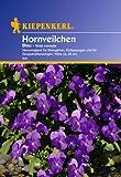 Sperli Blumensamen Hornveilchen, blau/grün