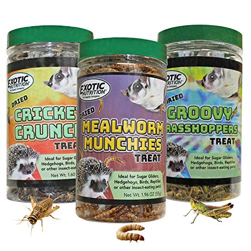 Dried Insect 3 Pack - Crickets, Grasshoppers, Mealworms - for Sugar Gliders, Hedgehogs, Wild Birds, Chickens, Turtles, Tropical Fish, Reptiles