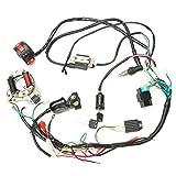 Arnés de Cable, CDI Montaje de cableados Cableado Conjunto de 50cc-125cc Chino ATV Quad eléctrico