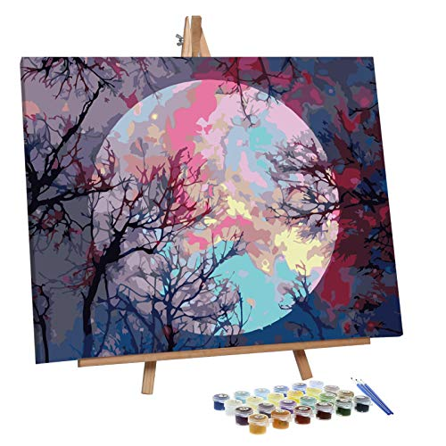 VIGEIYA Paint by Numbers for Adults Beginners with Framed Canvas and Easel Including Acrylic Paints Paintbrushes 16x20in (Moon)