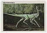 Ornithomimus - Dinosaurs: The Mesozoic Era (Trading Card) # 39 - Redstone Marketing 1993 Mint