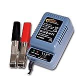 H-Tronic AL 300 Pro - Cargador automático de batería