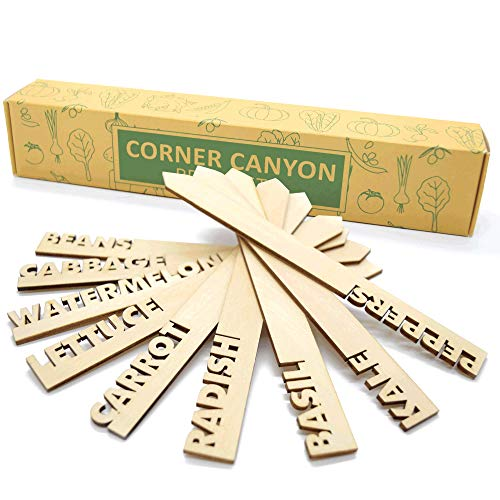 Wooden Plant Labels for Nursery Garden - 20 Plant Markers are Great Garden Gifts to Label Outdoor Or Indoor Plants, Vegetable, Herb, Pots, Ect.