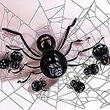 Cynamus Globos de araña de Halloween, Juego De Globos De Araña De Halloween, Globos decorativos de Halloween - Reutilizable - Globos de Araña de Látex, para Fiesta de Halloween (Negro)