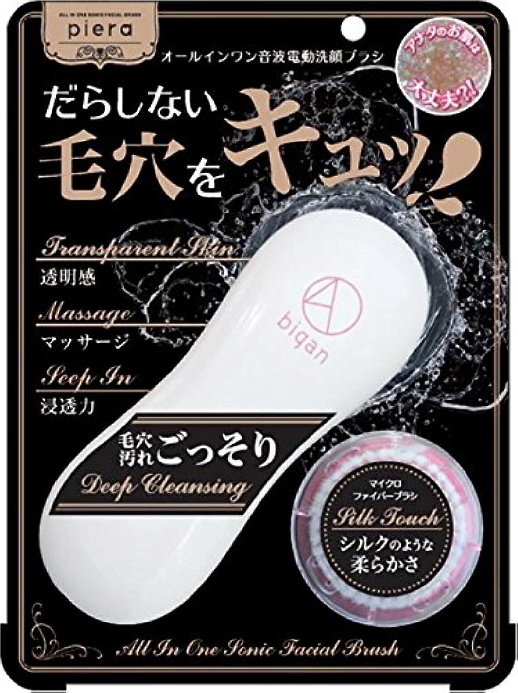 ホース縫い目過度のイシザワ ピエラ 電動洗顔ブラシ4D bigan 1個