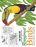 Rainforest Birds: A Special Edition Coloring Book (Animal Sketches)