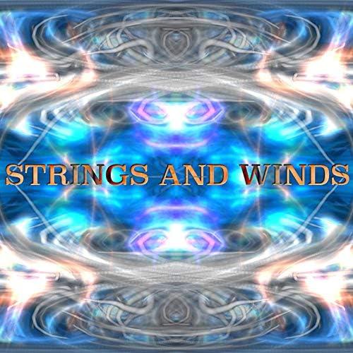Zen Meditation Garden, Violin Collective & Instrumental Zone