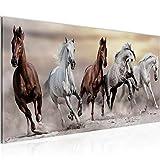 Wandbilder Pferde 1 Teilig Modern Vlies Leinwand Wohnzimmer