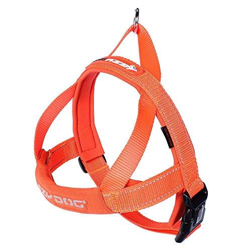 EzyDog 5708214206045 Quick Fit Geschirr Blaze, S, orange
