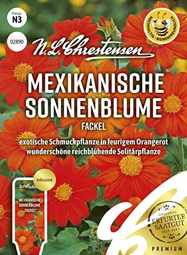 Mexikanische Sonnenblume Fackel, exotische Schmuckpflanze in feurigem Orangerot, bienenfreundlich, Samen