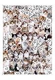 EACHHAHA Puzzle 1000 Piezas,Gato Puzzles para Adultos, Puzzle París,70x50CM,Rompecabezas de Piso Juego de Rompecabezas y Juego Familiar