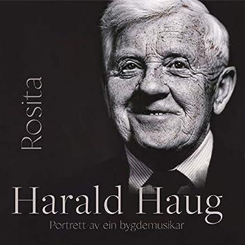 Harald Haug - Rosita - Portrett av ein bygdemusikar