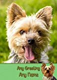 Personalised Yorkie/Yorkshire Terrier Dog Greeting Card (Birthday, Fathers Day, Any Occasion)