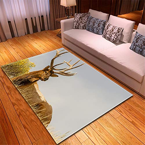 Alfombras de salón Home Pelo Corto Suave Diseño Lavables Antideslizante Tradicional baratas...