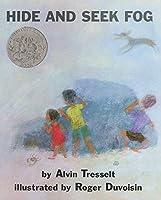 Hide and Seek Fog (Mulberry Books)