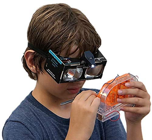 MOGORIGAMI Optical Origami kit (LED is not Included) Unique Prismatic Lenses, Binocular Magnifier, 2D Smartphone viewer, 3D Spatial Thinking, fine motoric Skills, Augmented Reality (not VR)