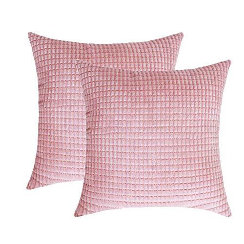 Toruiwa - 2 fundas de cojín (40 x 40 cm, terciopelo, decorativas, funda de almohada para decoración del hogar, dormitorio, salón, oficina, color beige 40 x 40 cm), rosa, 40 x 40 cm