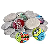 DALTACK 20PCS Large Rocks for Painting, Smooth & Flat Kindness Craft Rocks River Stones, 2'-3' Inches Each Hand Picked for Painting Rocks