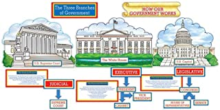 branches of government bulletin board