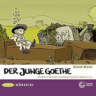 Der junge Goethe Titelbild